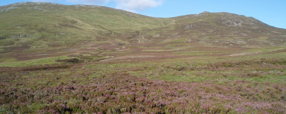 Member's seminars - Werritty report on grouse moor management